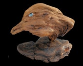 Driftwood Art - Keen eye watching...