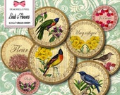 Vintage Birds & Flowers Digital Collage Sheet 12 Circle Rounds 2.5 Inches for bottle caps, pendants, stickers, scrapbook