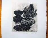 iSimangaliso:  Original, handprinted etching