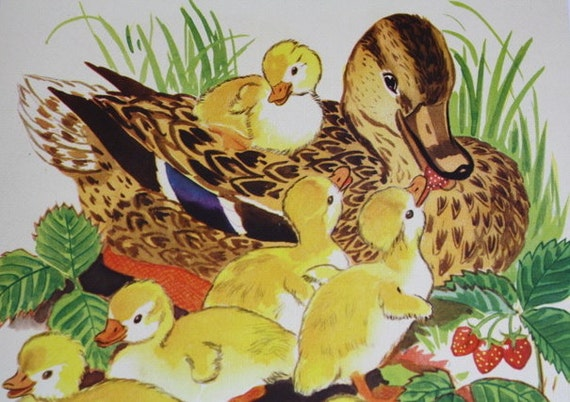 Mamma Duck and Baby Duckings- Original 1943 Childrens Nursery Illustration of Farm Animals