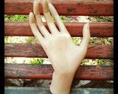 Hand's mannequin