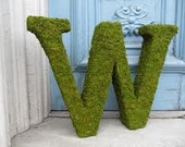 Large Moss Covered Letter