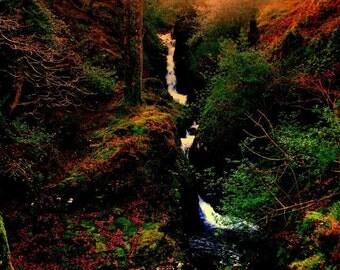 Irish Landscape Photography Forest Waterfall Ireland Home Decor Print Glendalough
