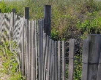 Sea Walk. |  Beach fence with sea grass Ocean Sea fine art photo from Myrtle Beach, SC Fine Art Photography 8x10