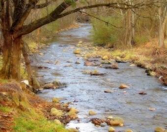 The Creek. Del Rio, TN   8x10