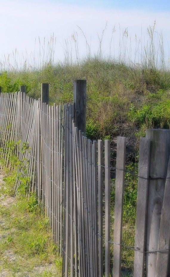 Weathered Beach Fence With Sea Grass Ocean Sea Fine By