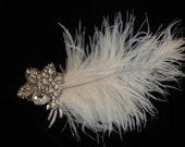 Feather crystal orchid head pic.