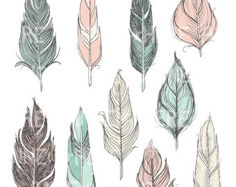 Illustrated Feathers - Digital Clip Art