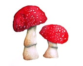 Watercolour Toadstool - Fly Agaric - High Quality Artist's Print of Original Painting 5 by 7