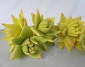 Edible Fondant Sugar Flower SUCCULENTS - 3 qty large, med, sm for wedding cake, modern wedding