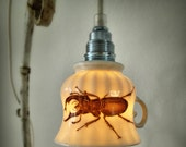 big black beetle teacup lamp