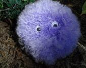 "Pygmy Puff - ""TONKS"""