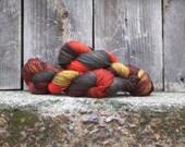 Hand-Dyed Merino/Nylon Sock Yarn -Bittersweet