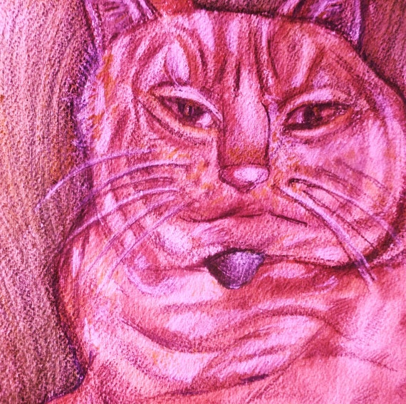 Custom Poochy Pet Portraits: Cat, Pet Portraits, Cats, Original Paintings, Pets, Pink Cat, Pet Art