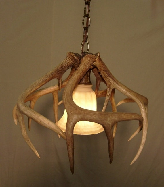 Real Whitetail Antler Pendant Light Fixture By Idaglowantler
