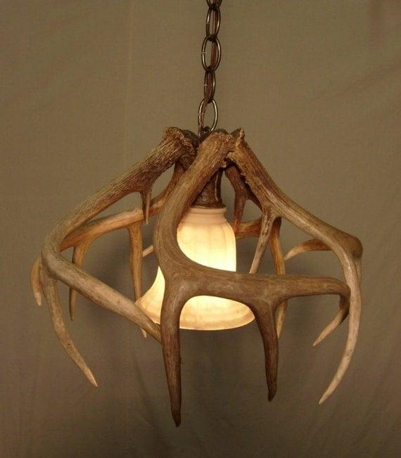 real whitetail antler pendant light fixture by idaglowantler. Black Bedroom Furniture Sets. Home Design Ideas