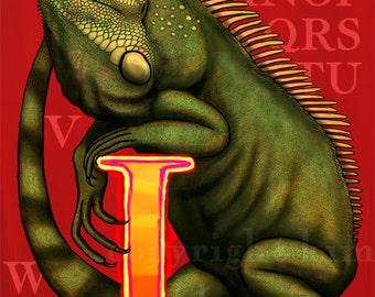 I Iguana Alphabet Print 8x10 Signed