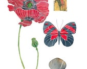 Poppy Watercolour Painting Original Watercolour Botany Art Still Life - on sale