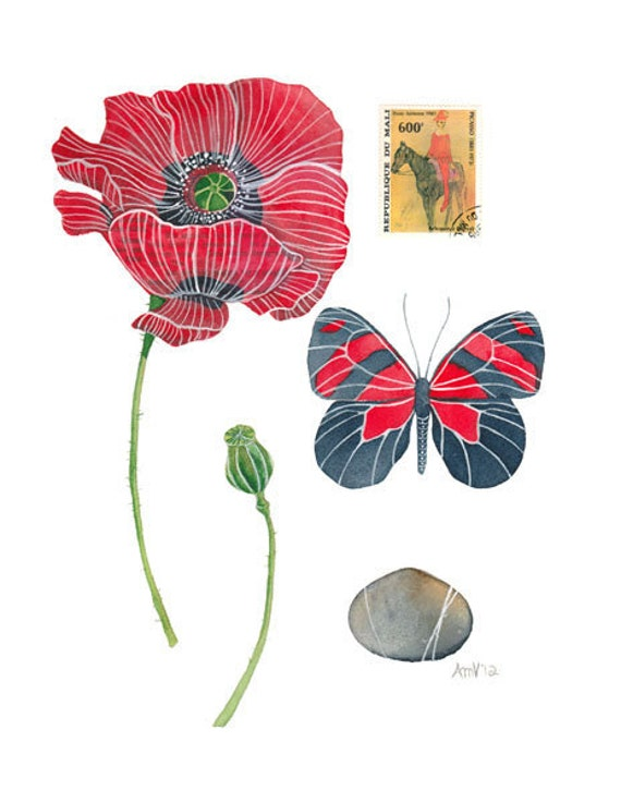 SALE Poppy Watercolour Painting Original Watercolour Botany Art Still Life