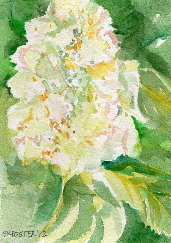 Hydrangea Watercolor Painting  Original, white flowers, original watercolor painting white, green Oakleaf hydrangeas, hydrangea decor