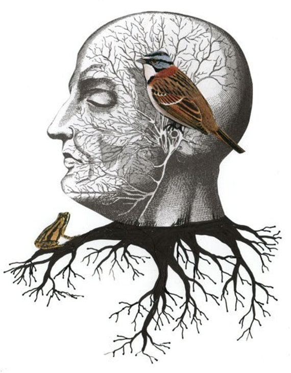 Clearance! Surreal Art Print , Bird Collage Reproduction , Nature Art , 5x7. Print 7107