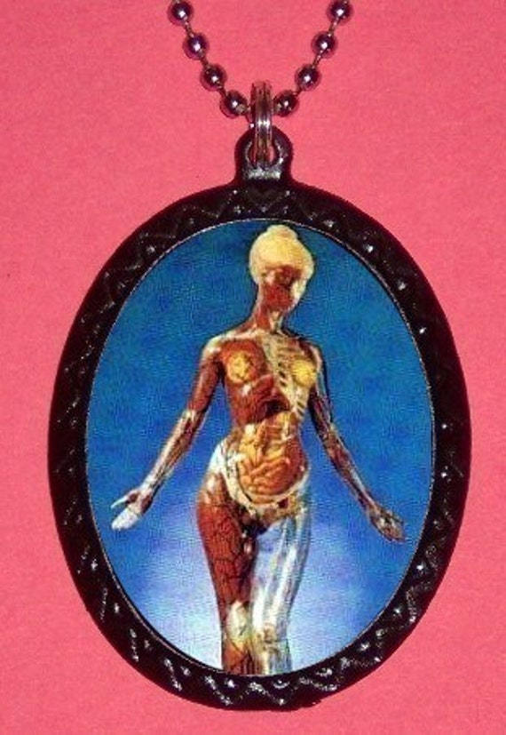 Female Anatomy Necklace Inside-Out Body Organs Medical Weird Goth Surreal Pendant