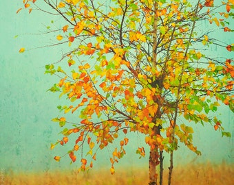 Contemporary Tree Decor, Fall Decor, Autumn Photography, Colorful Nature Photo, Autumn Landscape, Green, Gold, Mint Green, Fall Foliage