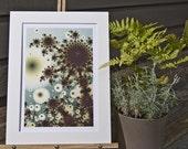Dandelion, Matted Fractal Print