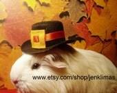 "Adorable White Fluffy GUINEA PIG PILGRIM Portrait - Limited Edition 8x10"" Thanksgiving Photograph"