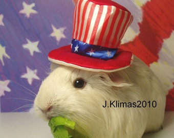 """Patriotic JULY 4 GUINEA PIG Uncle Sam Portrait - Limited Edition 8x10"""" Glossy Photograph"""