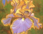 Garden Diva- Original Lavender Iris Framed Oil Painting on Paper by Jennifer Greenfield