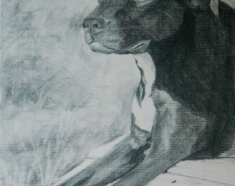 Custom Charcoal Portrait 1 SUBJECT -Child, adult, or pet