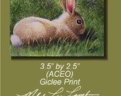 Cottontail Bunny Rabbit Art by Melody Lea Lamb ACEO Print