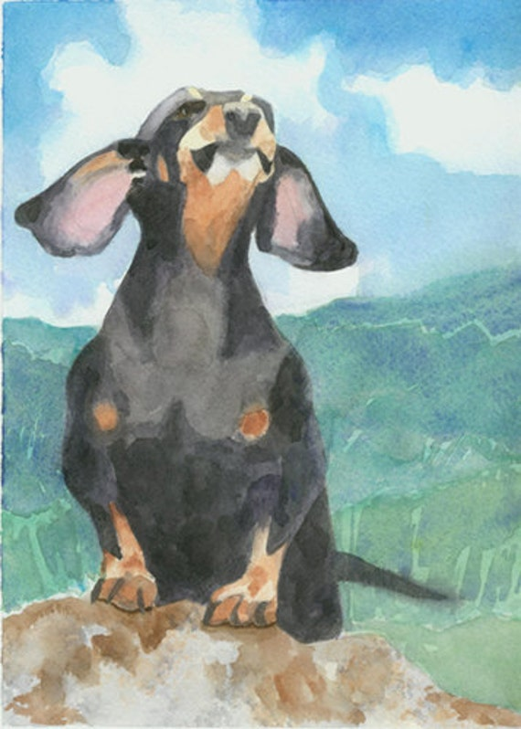 Dachshund Dog art Print of my watercolor painting