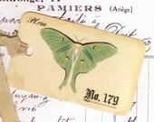 Luna Moth , Gift Tags , Green Moth , Vintage Tags ,  Natural History , Bluebird Lane