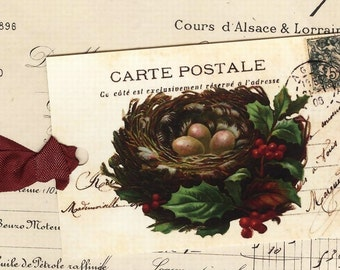 Christmas  Gift Tags  /  Vintage Bird Nest  / Rustic Christmas / Woodland Christmas