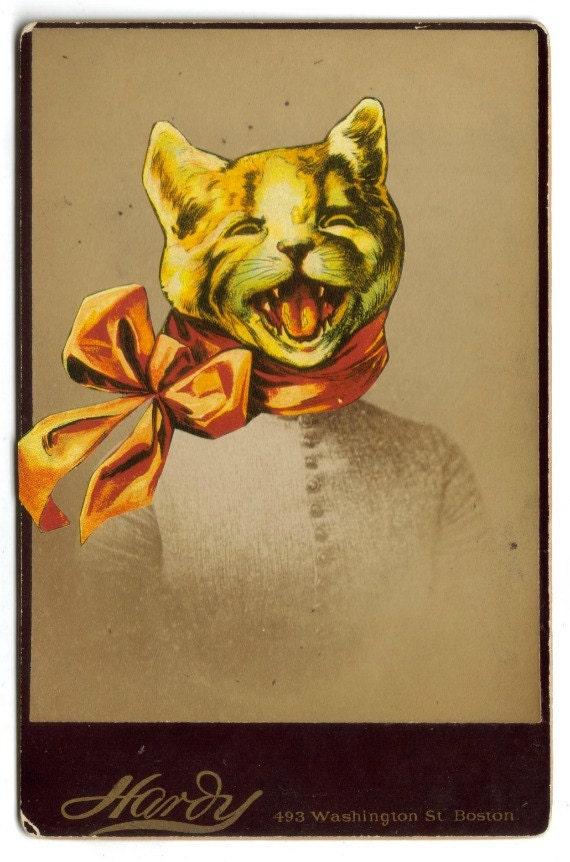 Anthropomorphic Animal Kitty Cat Art Collage Original Altered Photo Photograph