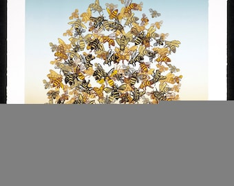 Bee Pile Large Serigraph Colony Collapse Disorder
