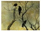 Crows Photograph, Silver Halide Crow Print,  Ravens Fine Art Print - I know a secret