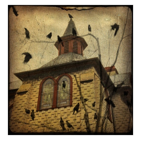 Crows outside the old vintage church - Cityscape - surreal urban birds portrait