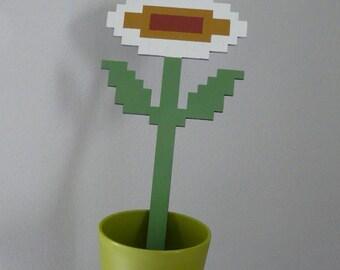 pseuderanthemum incendia (fire flower) - super mario art