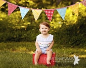 Bunting, Carnival Themed Gender Neutral Flag Banner, Designer's Choice, Ready To Ship Photography Prop.  Also For Weddings and Parties.