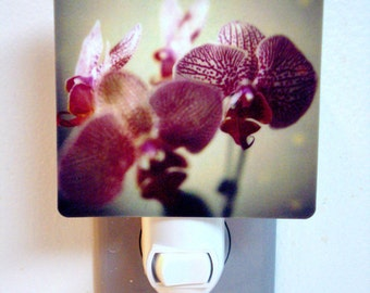 Clearance DISCONTINUED Polaroid Photo Orchid Night Light - Seduction - Unique Housewarming Gift, Whimsical Home Nursery Decor,
