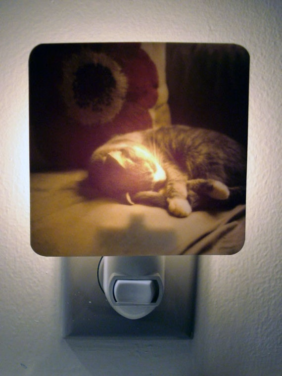 Clearance DISCONTINUED Kitty Cat Night Light - Dawn's First Light Polaroid - Unique Housewarming Gift, Whimsical Home Nursery Decor,