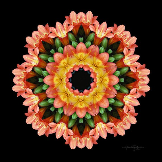 Flower Mandala Art - Danza de la Vida