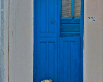 cobalt blue white blue door photograph  WATCH DOG  sitting dog abstract Greece Greek animal Santorini travel