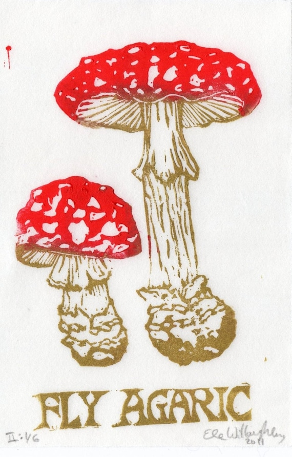 Fly Agaric Linocut - Fairytale Mushroom Amanita muscaria with Red and White Cap, Typography, Natural History, Lino Block Print