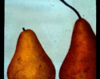 PERFECT PAIR - TtV Original Fine Art Photography Print - Signed and Dated -- Giclee, Gift, Fruit, Pear, Pears, Dessert, Kitchen Wall Art