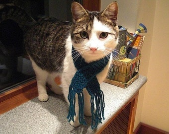 Kitty Scarf - Teal