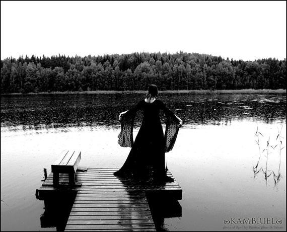 Shimmering Black Suspiria Gown by Kambriel